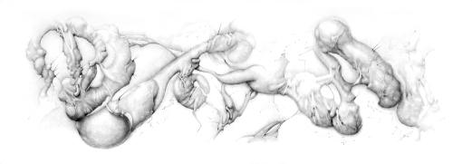 """""""Atrofia"""" Grafito/papel 35x100 cm 2013"""