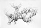 """""""Sedare"""" Grafito/papel 35x50 cm 2013"""