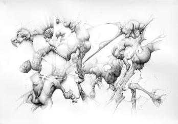 """""""Teratos""""Grafito/papel 70x100 cm 2010"""